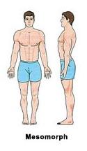 Мезоморфный тип телосложения
